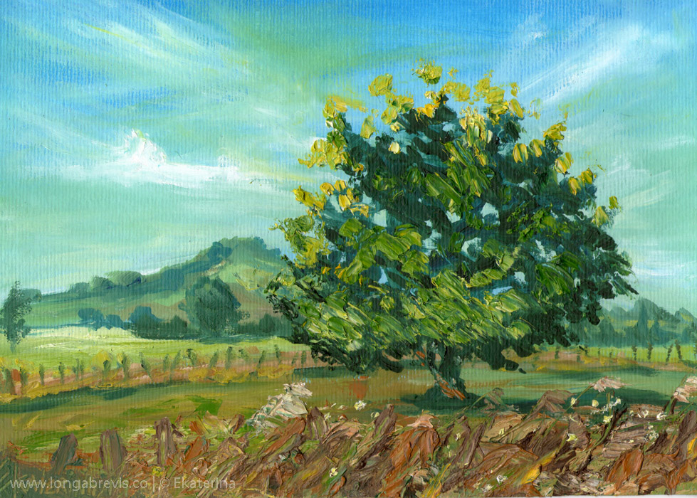 New Zealand Cambridge landscape painting